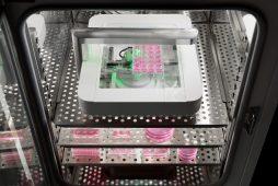 CytoSMART Omni in incubator, CytoSMART Technologies BV